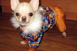 Удобная одежда McDog для небольших собак