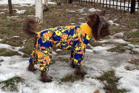 Одежда для маленьких собак в Интернет-Магазине - McDog.ru