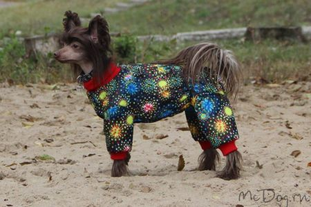 Одежда для китайских хохлатых собак. Доставка по России - McDog.ru