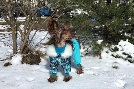Одежда McDog для собак
