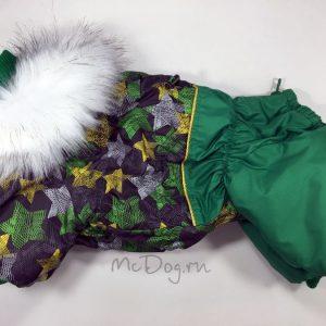 Зимний комбинезон McDog «Зеленые звезды с зеленым»