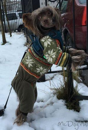 """Зимний флисовый комбинезон для собак McDog """"Зеленые снежинки"""" без воротника"""