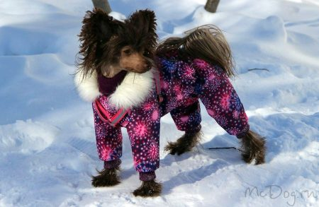 """Зимний мембранный комбинезон для собак McDog """"Розовый салют"""""""