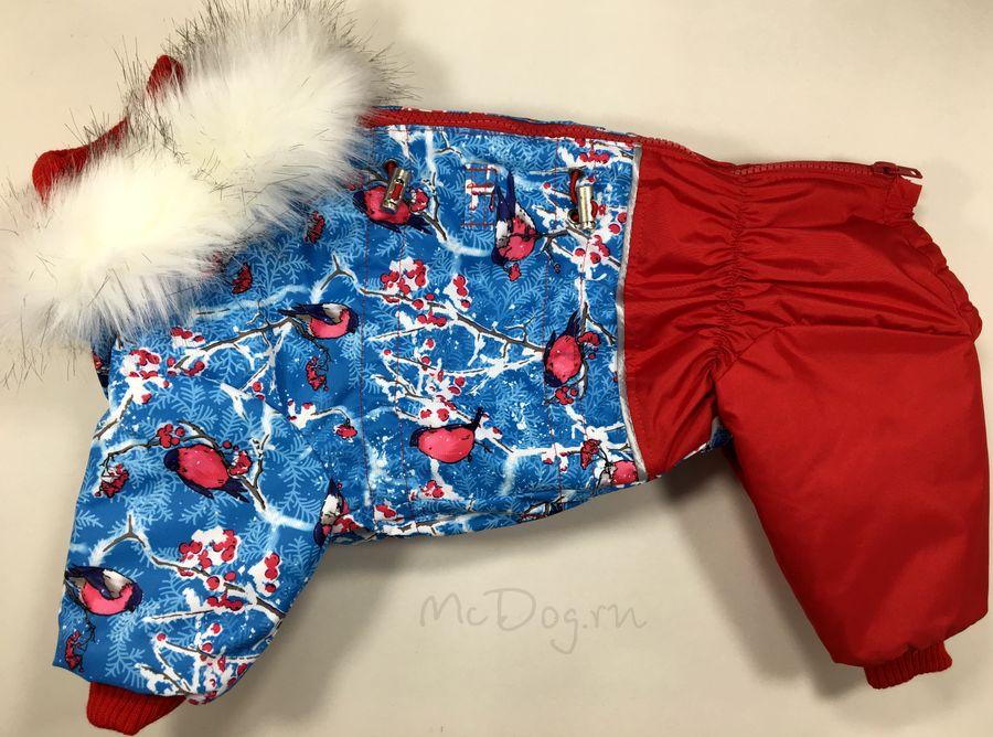 """Зимний комбинезон для собак McDog """"Снегири с красным"""""""