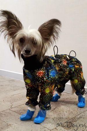 Купить Одежду для собак в СПб