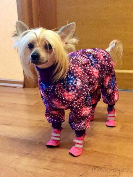 """Зимний мембранный комбинезон для собак """"Розовый салют"""""""