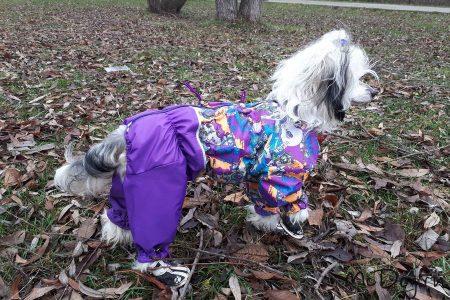 """Комбинезон McDog """"Фиолетовый Urban с фиолетовым"""" на кнопке мембранный с плащевкой"""