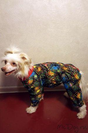 Купить одежду для собак в интернет магазине Mcdog.ru