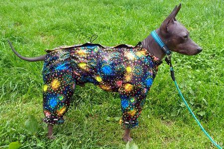 Мембранные ткани в комбинезонах для собак