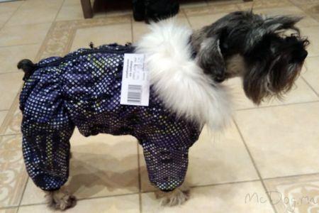 Одежда для цвергшнауцеров в интернет магазине Mcdog.ru