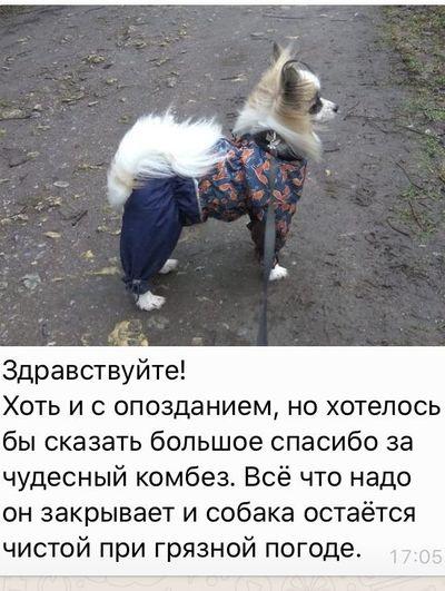 Одежда для Шпицов в интернет-магазине Mcdog.ru