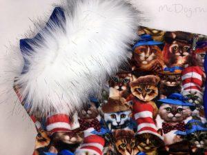 Зимний флисовый комбинезон McDog «Кошки с синим» с меховым воротником